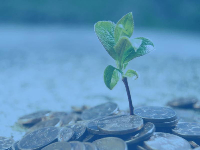 Why Venture Capital In South Africa Is Crucial For The Growth Of Our Economy